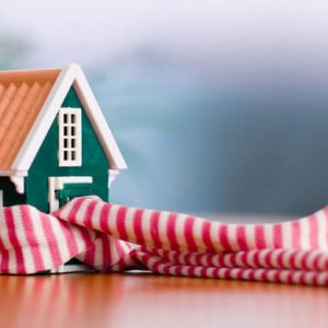 Toy-House-Wearing-A-Scarf